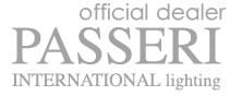 passeri international logo